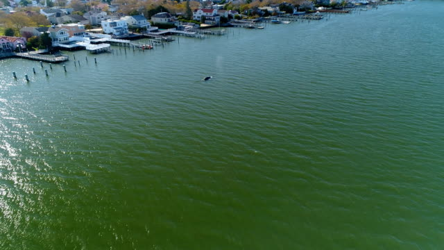 This video show the first day Reynolds the humpback was spotted inside Reynolds Channel in Atlantic Beach NY