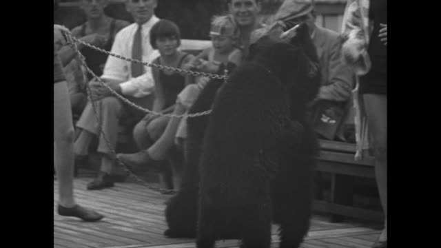 Three bear cubs holding and drinking from milk bottles people sitting and watching woman holding cubs with chain / VS woman in bathing suits hands...