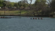 WS PAN Three coxed four-person rowing crews racing in competition on lake / Austin, Texas