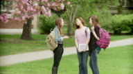 Three girls on school campus