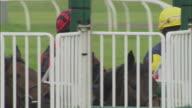CU Three jockeys sitting on horses inside gates before race at Newbury Racecourse / Newbury, England, UK
