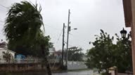 Three medium wide shots of Hurricane Maria making landfall in Puerto Rico Extreme strong winds shaking trees and electrical power cables Shot at 740...