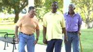 Three senior men on bench, get up, walk, talk