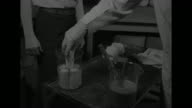 Three shots of man in lab coat putting sleeve on other man's arm / man in lab coat puts rolls of plastic adhesive bandages in water / several shots...