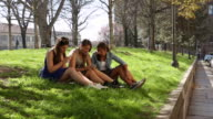 Three teen girls sit on grass in urban park and share messages from digital phones