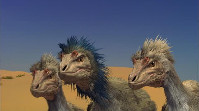 CGI, CU, Three Velociraptors on sand dune
