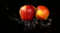 Three videos of falling apples in real slow motion