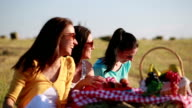 Three woman on picnic