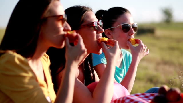 Three woman on picnic