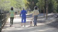 WS PAN Three women walking along path with dog / Los Angeles, California, USA