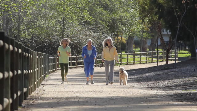 WS Three women walking and running along path with dog / Los Angeles, California, USA