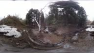 Tibble Fork Creek