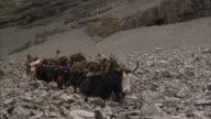 A Tibetan caravan climbs a mountain trail.