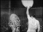 B/W 1955 PAN tiger jumping thru paper disc being held by trainer in circus