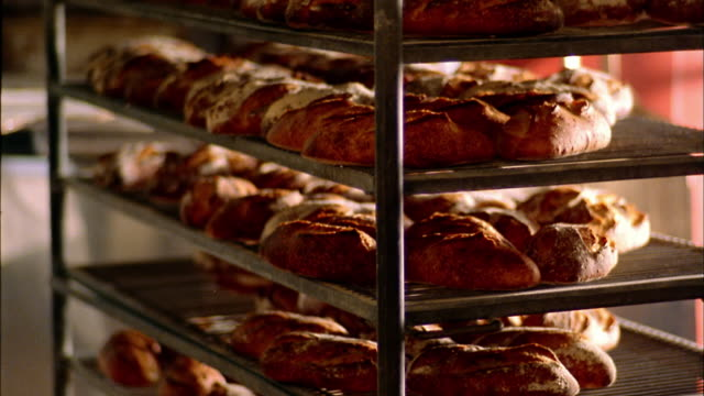 Tilt down loaves of fresh bread on cooling rack / Seattle, Washington