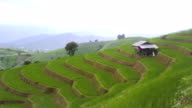 Kippen: kleine Hütte ist Reis Terrasse gehören