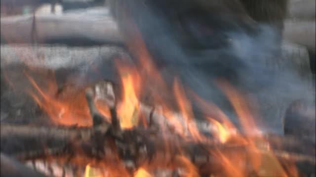 Tilt up from flames of fire to sitting Japanese macaque, Jigokudani Monkey Park, Hakodate, Hokkaido