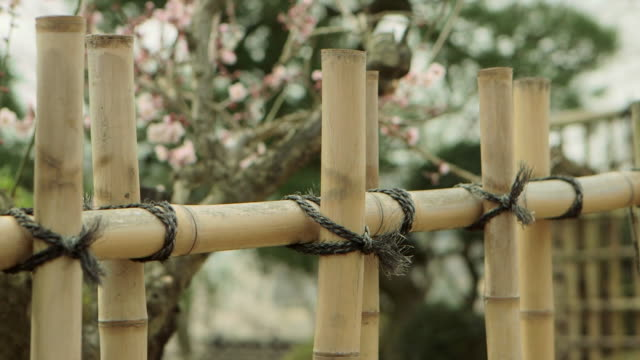 Tilt up shot of an old bleached bamboo fence in Ibaraki Kairakuen Garden