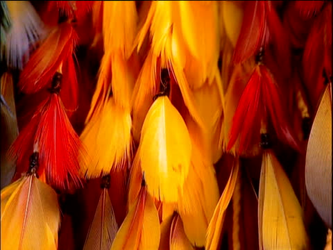 Tilt up Umahara headdress made of human hair and parrot feathers Brazil