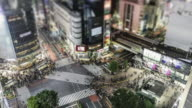 TL, WS, HA, Tilt-Shift Crowds and traffic on a crossing or scramblewalk in Tokyo's Shibuya district / Tokyo, Japan
