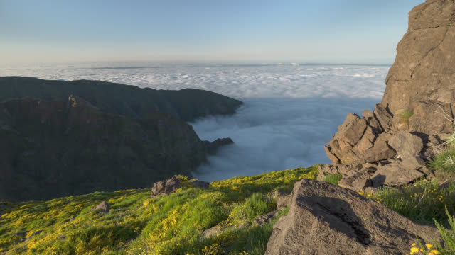 Time lapse above rolling clouds on a mountainside with yellow flowers