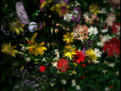 CGI OVERHEAD time lapse bunch of multi-colored flowers growing out of grass + blooming to fill up screen