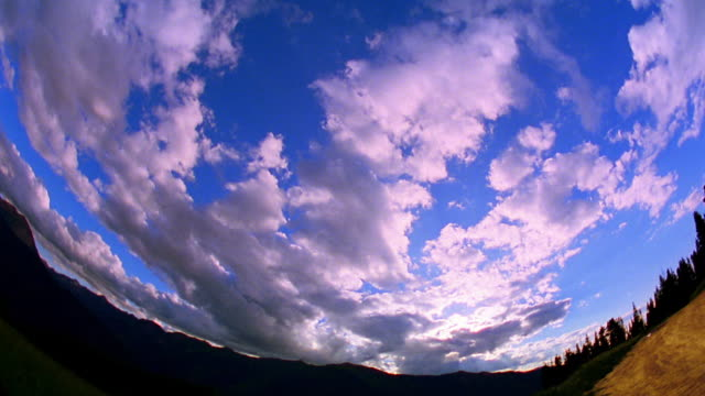FISHEYE PAN time lapse fluffy white clouds over mountains + pine trees / Aspen, Colorado