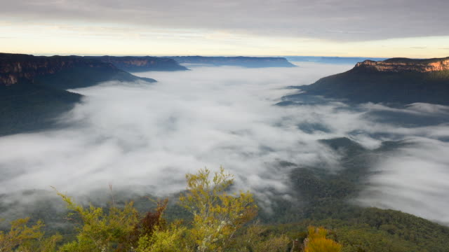Time lapse fog in the morning in Blue Mountains national park
