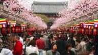 Time lapse long shot pedestrians on the crowded Nakamise-dori leading to Asakusa Kannon Temple / Tokyo, Japan