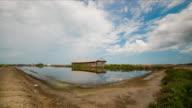 Time Lapse Salz Landwirtschaft Naklua in der Küstenregion, Thailand