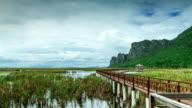 Zeitraffer:  Holz-Brücke in Khoa Sam Roi Yod
