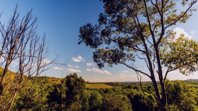 4K Timelapse at hinterland of Byron Bay, New South Wales, Australia, landscape with a tilt up effect