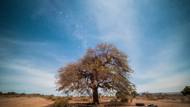 Timelapse - Atacama Desert