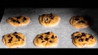 Timelapse: Chocolate Chip Cookies Baking in Oven