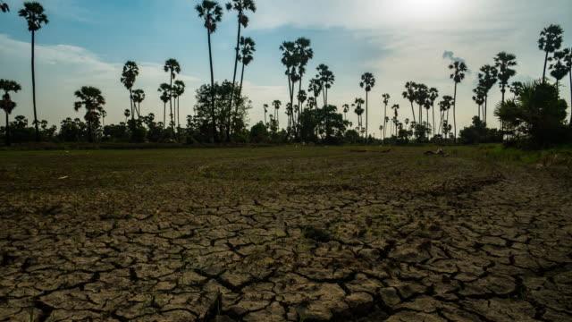 timelapse: gebarsten bodem grond