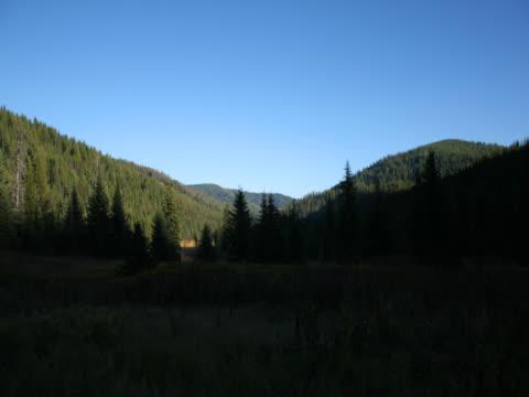 time-lapse darkness falls on green fieldTime-lapse of clouds shadowing darkness on green treed field