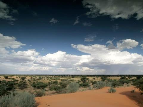 Timelapse Desert scene with scrub, pan across, Kalahari, South Africa