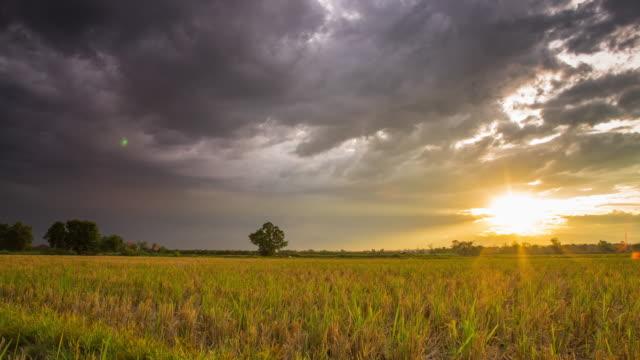 4K Time-lapse: veld en Rainclouds met zonsondergang Time-lapse