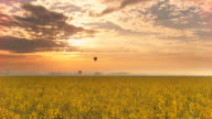HD Time-Lapse: Hot Air Balloons Over The Canola Field