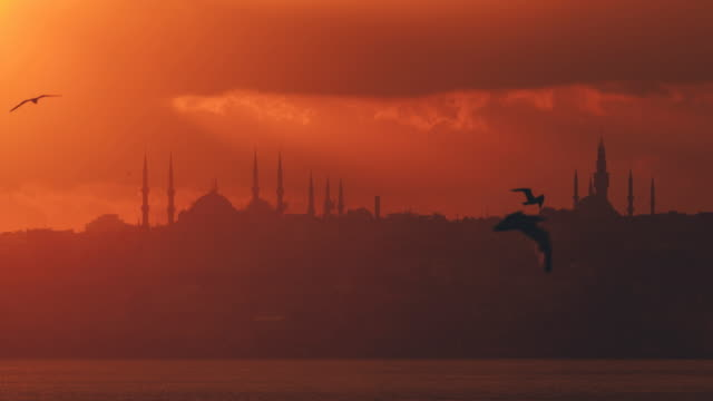 Timelapse: Istanbul zonsondergang achter het silhouet van de blauwe moskee