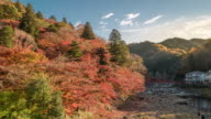 Time-lapse: korankei Forest park with Autumn Red Leave Nagoya Japan
