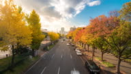 Time-lapse: Nagoya Autumn road at okamiya street Yabachi station Japan