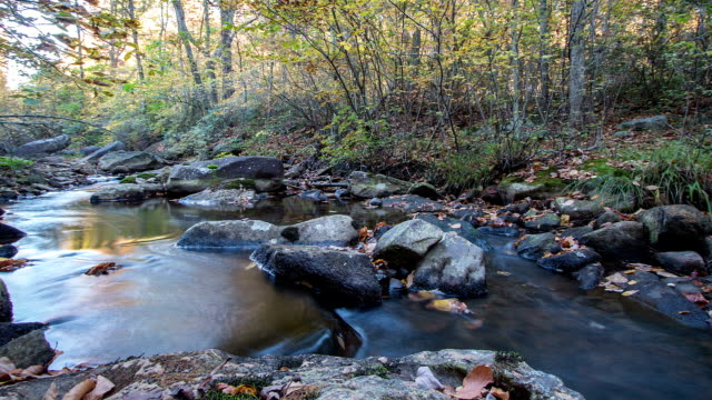 Timelapse of Autumn Creek in the Mountains
