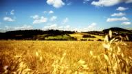 Timelapse of Maremma Countryside: Tuscany