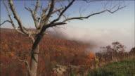 Timelapse of mist moving in over Virginia Hills