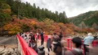 Time-lapse: Pedestrian crowded at korankei Forest park Autumn Nagoya Japan