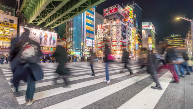 Time-lapse: Pedestrians crowded shopping Akihabara electric town Tokyo night
