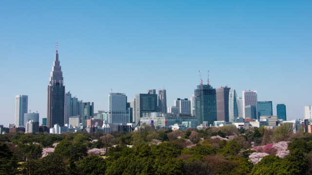 Timelapse Shinjuku Buildings and Shinjuku Gyoen in Spring