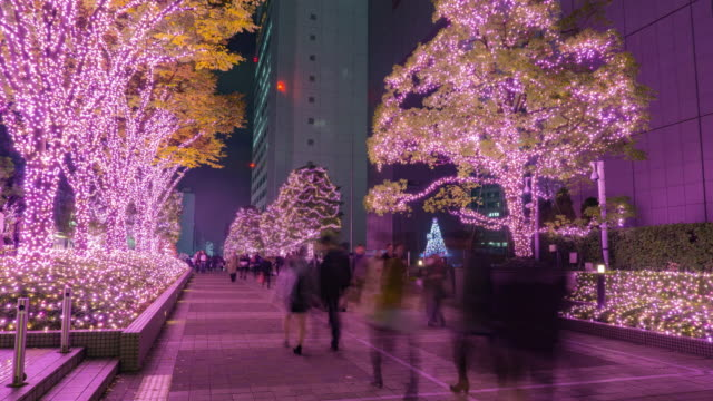 4K Timelapse: Shinjuku terras stad verlichting in Tokio, Japan