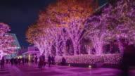 4K Timelapse : Shinjuku Terrace City Illumination in Tokyo , Japan